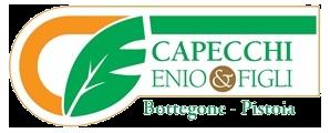 Capecchi